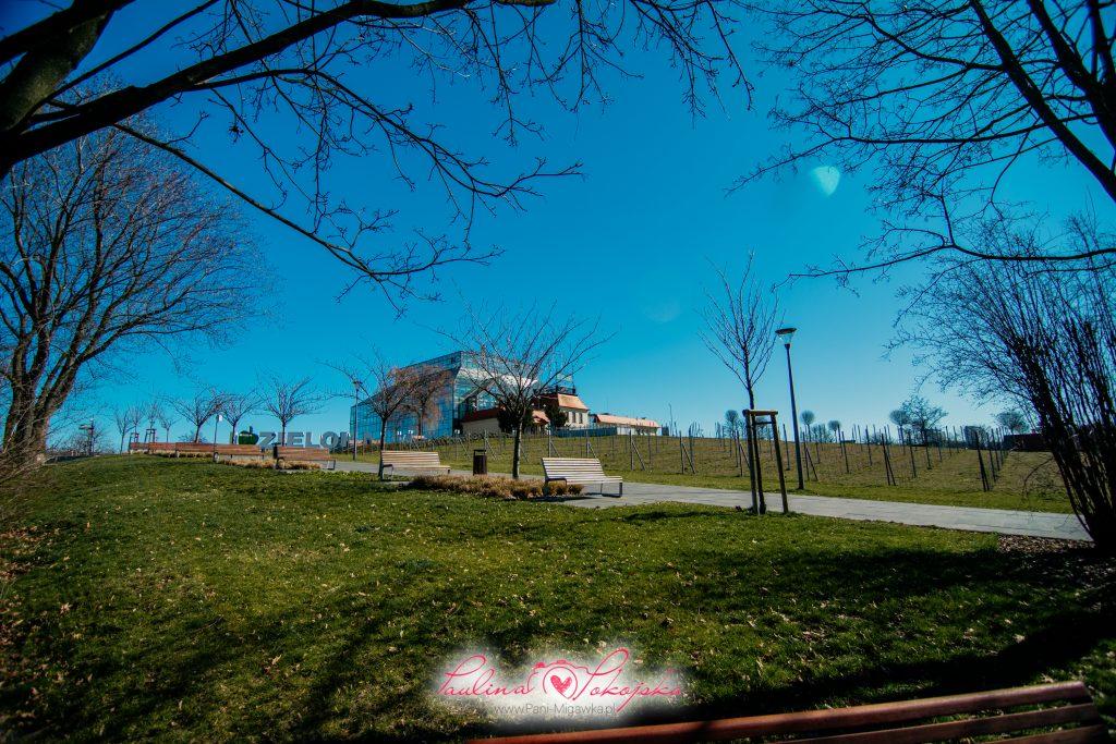 Fotografi Zielona Góra