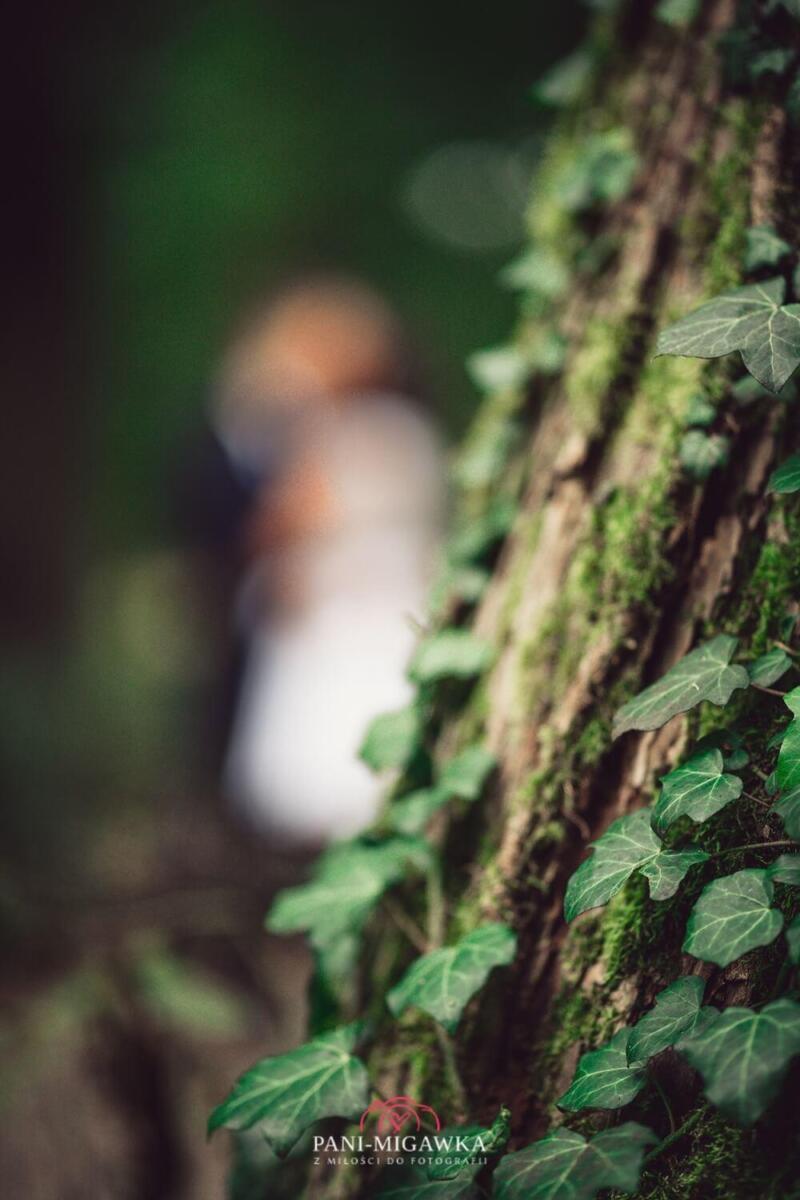 www.Pani-Migawka.pl fotograf na sesje zdjęciową ślubną Zielona Góra